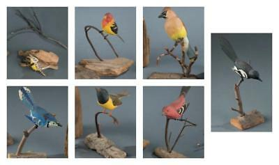 Helen Lay Strong, 7 Birds on twigs. Lot 238