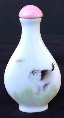 Antique Chinese Painted Porcelain Snuff Bottle