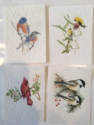 4 Beautiful Handmade Paper Note Cards Nature Watercolor BIRD Designs 4x 51/2 WOW