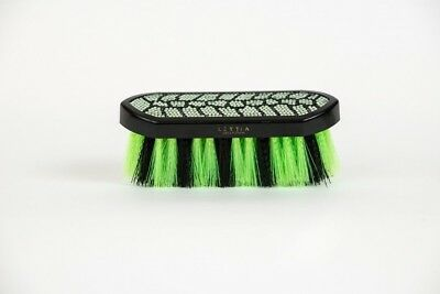 Lettia Crystal Dandy Brush with Stylish Designs for Horse Grooming