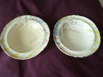 2 Vintage Foley Bone China Bowls- Delphiniums In Cottage Garden Pattern[No.1909]