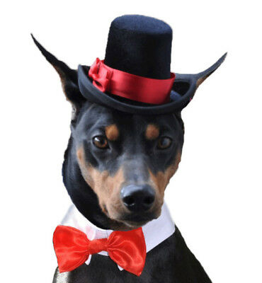"""Dog top hat for medium sized dogs with 13-15"""" collar size (hat only)"""