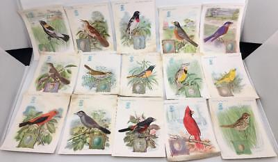(15)  1927 vintage Singer Sewing victorian SONG BIRD Trade CARDS  antique paper