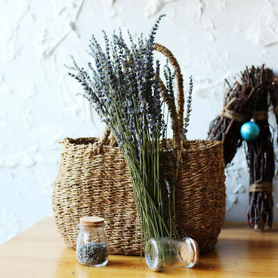 100 Stems Natural Dried French Fragrant Lavender Bunch Tied Home Decoration Hot