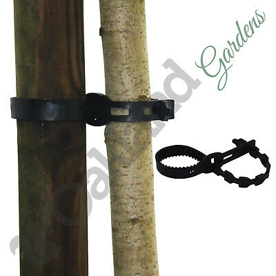 """2 X 40cm (16"""") Super Soft Rubber Tree Ties Straps Plant Support Whip Bareroot"""
