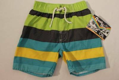 124d256198 NEW Toddler Boys Swim Trunks Bathing Suit Shorts Size 2T Lined Green Blue  Summer