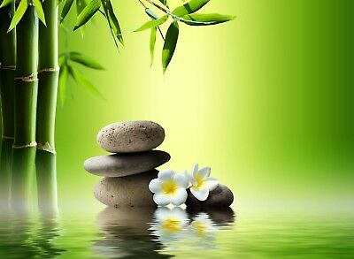 White Flower - Green Bamboo Sticks Water Zen Stones Poster / Canvas Pictures
