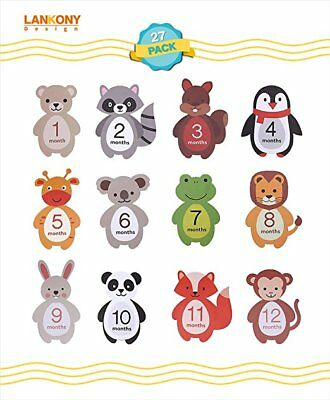 Lankony 27 Pack of Unisex Milestone Stickers -12 Baby Monthly Stickers