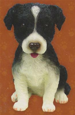 Border Collie BOBBLE HEAD FIGURINE Puppy Dog Show Trophy Auto RV Pet Canine NEW