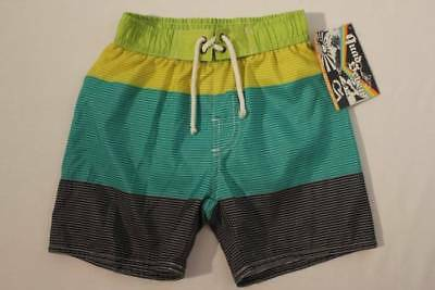 NEW Toddler Boys Swim Trunks Bathing Suit Shorts Size 2T Lined Green Blue Summer