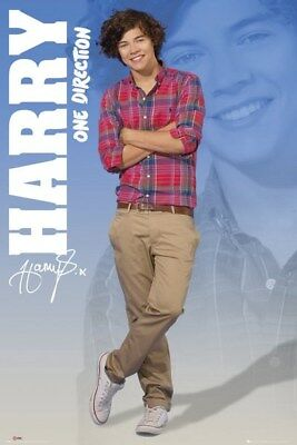 Harry (One Direction) Poster Grand Format 61 x 91.5 cm