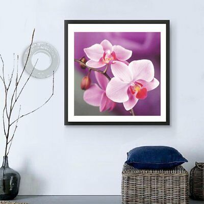 DIY 5D Full Diamonds Plated Moth Orchid Flower Embroidery Decorative Painting GU