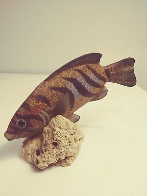 Beautiful Vintage Hand Carved & Painted Fish On Real Coral All Handmade!