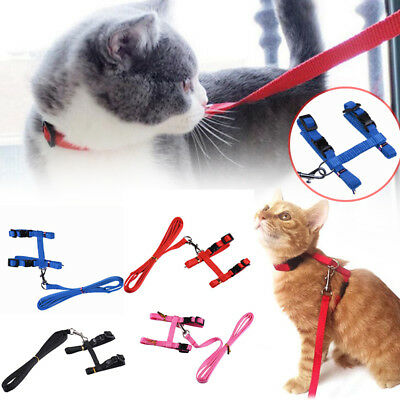 Cat Puppy Adjustable Harness Collar Nylon Leash Lead Safety Walking Rope Supply