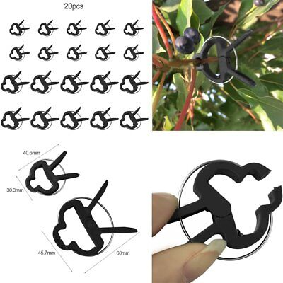 20X Plastic Garden Cane Support Sprung Plant Clips for Beans Tomato Cucumbers M@