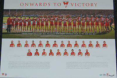 Sydney Swans Onwards To Victory 2012 Afl Premiership Limited Edition Print