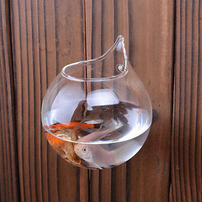 Creative Transparent Borosilicate Glass Wall Hanging Fish Tank Clear Vase I6J