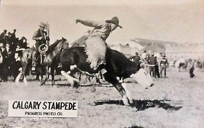 RPPC Calgary Stampede Progress Photo Company cowboy on bucking steer