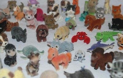 In my Pocket Bundles Jungle, Ocean, Puppy, Pony, Kitty - Choose from Various