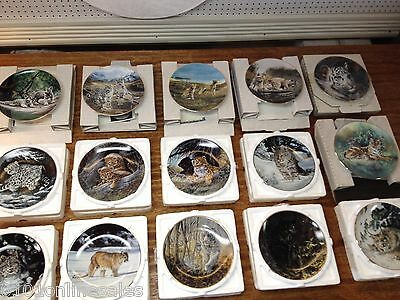 Pride of 15 Wild Cat Collector Plates incl Bradford,W.P.George All Boxed w/ COA!