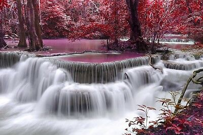 Red Trees Waterfall - Pink Stream Forest Landscape Art Poster / Canvas Pictures