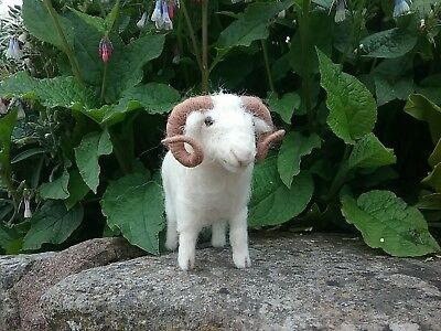 White Faced Woodland British Rare Breeds sheep  needle felt kit