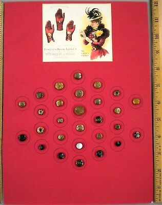 TRAY OF 28 ANTIQUE BUTTONS, Assorted LADY'S GLOVE BUTTONS, Small + Diminutive