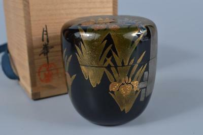 K429: Japanese XF Wooden Flower gold lacquer pattern TEA CADDY Natsume w/box