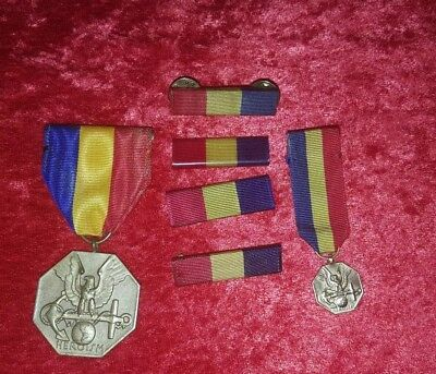 Slot Brooch NMCM Navy and Marine Corps Medal w/mini medal  Ribbons Wolf Brown...