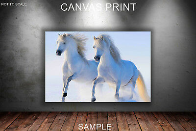 WHITE HORSE ON THE SNOW - CANVAS PRINT READY TO HANG or ROLLED FROM A4