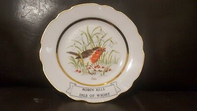 Robin Hill Country Park Isle of Wight Bird Lovers Gift plate decorative rare