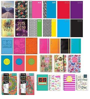 A5 Academic mid year student teacher diary planner 2018 - 2019 Page a Day or WTV