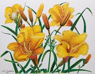 $30.00 OFF - Nature Yellow Lillie ORIGINAL Flower 8.5x11 by LVZimm