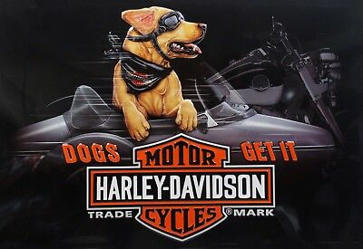 Dogs Get It Riding Buddy Retriever Harley Davidson Motorcycle Metal Sign