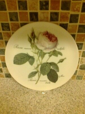 Roy Kirkham Bone China Sandwich Plate tennis plate REDOUTE ROSES DESIGN
