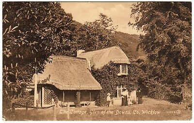 Postcard The Cottage Glen of The Downs Co. Wicklow Ireland 1918