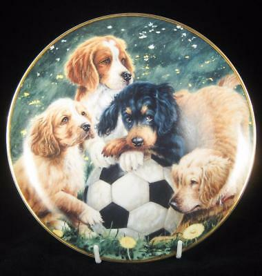 ASPCA Franklin Mint 'Soccer Scamps' Puppy Dogs Limited Edition Collector Plate