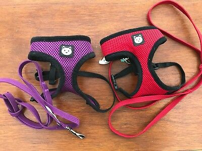 Two cat harness and leads - one red one purple for small/medium cats