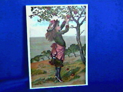 Antique Trade Card-4x6in-Dr.Swett's Root Beer-Boston MA-Girl Picking Apples