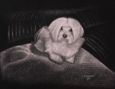 "$40.00 OFF - Animal Dog Maltese Cat  ORIGINAL Scratchboard Art 8.5x11""  by LVZ"