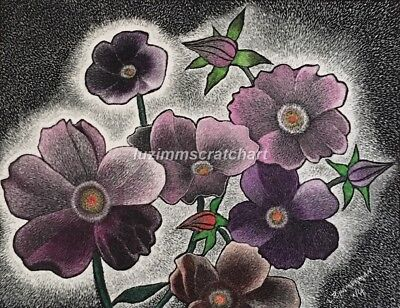 $30.00OFF -Nature Purple Pansies Rose Flower ORIGINAL Scratchboard 8.5x11 by LVZ