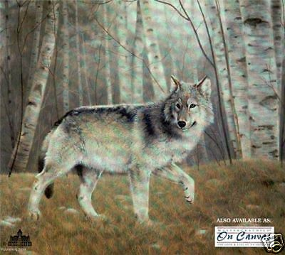 """Charles Frace print s/n """"Watchful"""" Gray Wolf"""