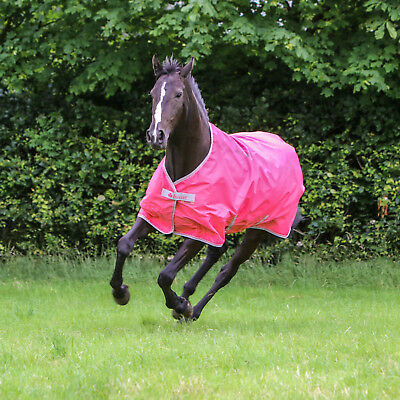 Bucas Freedom Turnout light in Paradise Pink
