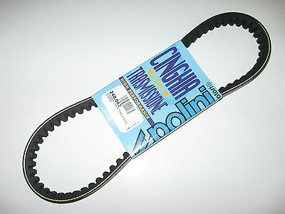 Polini Kymco Scooter Agility Dink People Supper 248.062 Variator Belt Italy