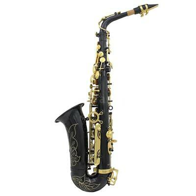 LADE New Professional Gold Eb Alto Sax Saxophone with Accessories Black B4J0