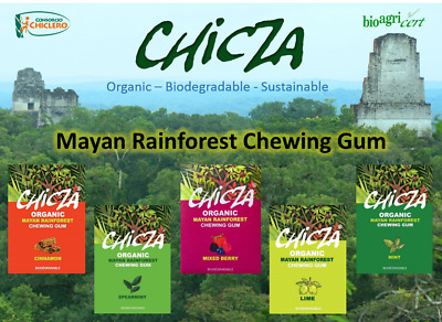 Chicza Organic Chewing Gum - Mint - Spearmint - Lime - Cinnamon - Mixed Berry