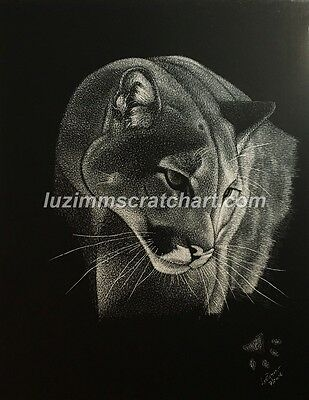 $15.00 OFF -  Scratch Board Art ORIGINAL Puma Lion Tiger 11x14 reg board by LVZ