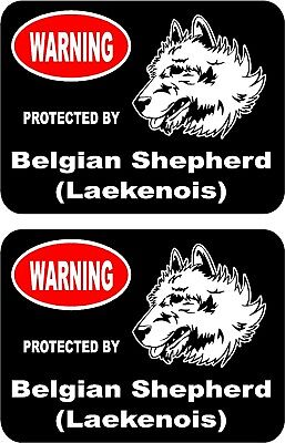 2 protected by Belgian Shepherd (Laekenois) dog home window vinyl stickers #B