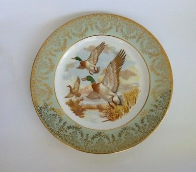 Staffordshire Ironstone England Porcelain Ceramic Plate Ducks Country WH Grindle