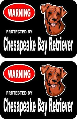 2 protected by Chesapeake Bay Retriever dog car home window vinyl stickers #C